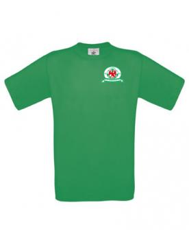 T-shirt groen heren